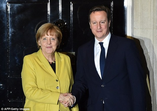 David Cameron had sought support from German Chancellor Angela Merkel for his plans for EU reform