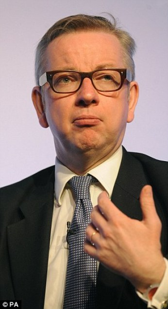 Justice Secretary Michael Gove (pictured) has expressed his frustration at Britain's position with the EU