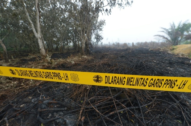 Three companies have been shut down permanently by Indonesia after having their licences revoked over their role in the blazes that choked vast expanses of s...