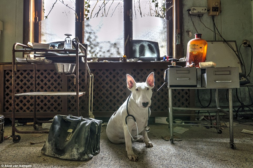 X-rays and old leather satchels remain scattered around this old doctors surgery in Belgium which was used for a photo by the duo