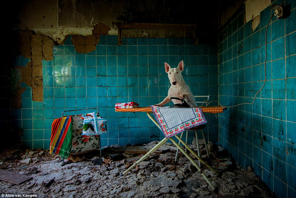 Claire poses for a photograph as she stands ironing a colourful tea towel in an abandoned farmhouse in the Netherlands