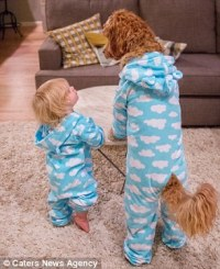 Reagan the Labradoodle and his owner's grandson wear ...