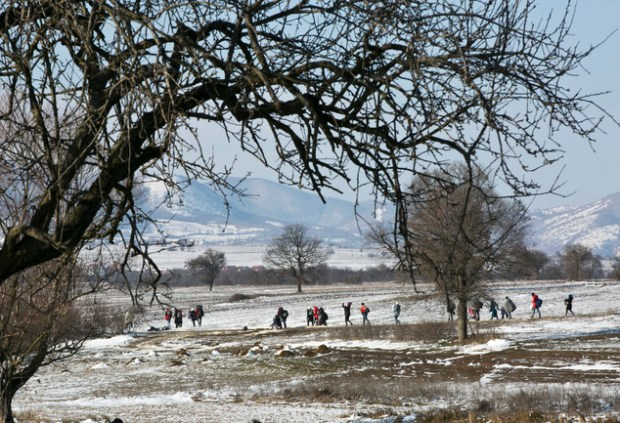 Freezing: Migrants walk from the Macedonian border into Serbia, near the village of Miratovac, Serbia, today