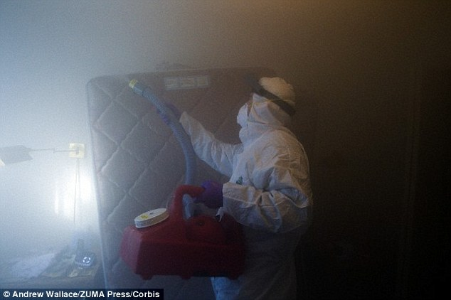 Researchers collected bed bugs from homes in Cincinnati and Michigan and exposed them to four different neonics - acetamiprid, dinotefuran, imidacloprid and thiamethoxam. A stock image of fumegation is shown