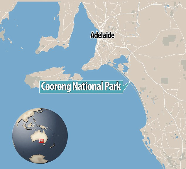 The alleged attack took place at Salt Creek in the vast Coorong National Park (above) along the South Australian coast at around 6.30pm on Tuesday