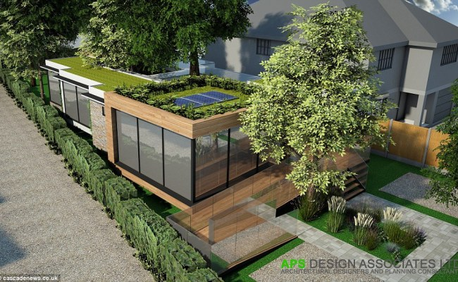 Architects Build Eco Friendly Home Around Trees To Avoid