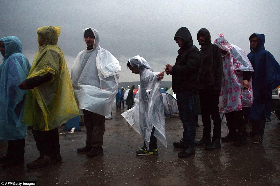 empapados migrantes que usan ponchos de plástico, en la foto, cola bajo la lluvia para recibir comida en un campamento improvisado en la frontera entre Grecia y Macedonia, cerca de la localidad de Idomeni