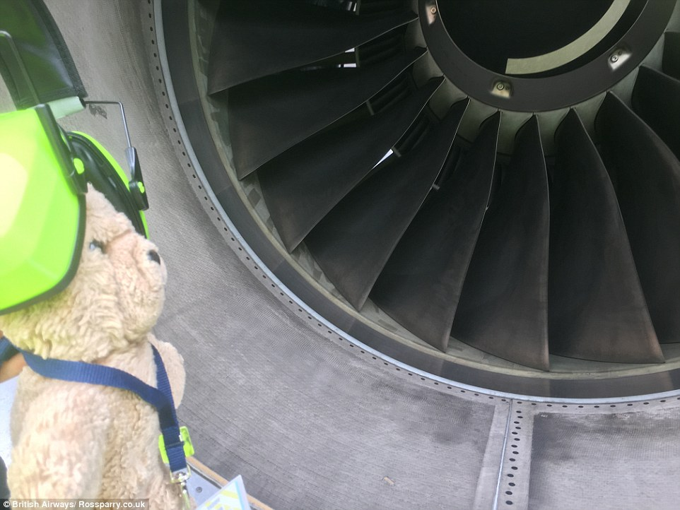 Once the family realised Pooh had gone missing they took to social media to try and find their furry family member - but little did they know, he was helping staff in Argentina. Here's Pooh inspecting one of BA's jet engines