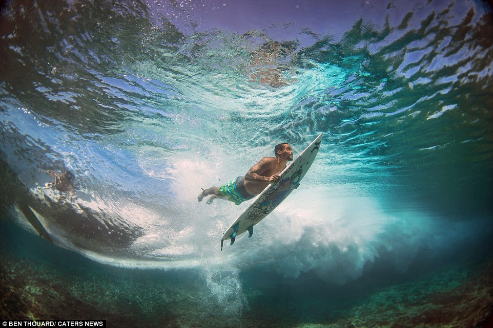 The collection of stunning underwater shots are described by the photographer as the 'result of a long quest'