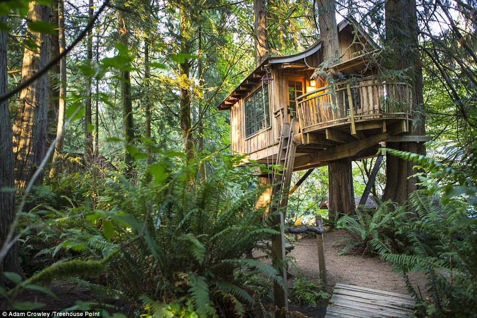 What makes TreeHouse Point even more perfect are the ways you access the treehouses. Guests have to travel across a swinging rope bridge or ascend a ladder to reach the forest paradises
