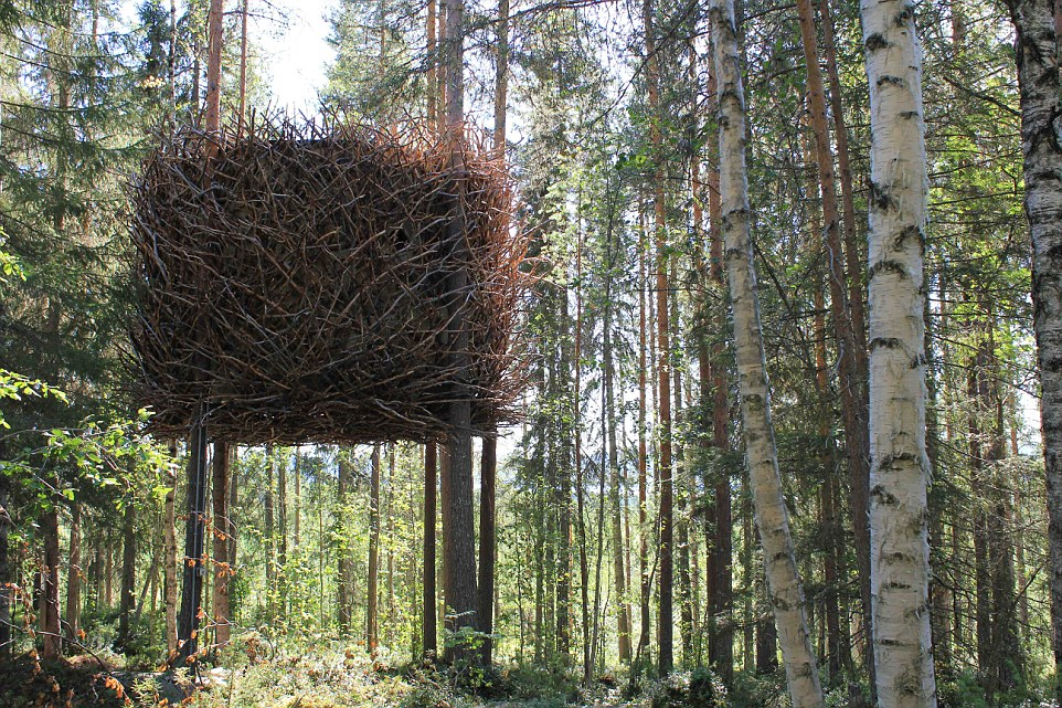 Can't see the wood from the trees: From the outside this hotel room looks exactly like a bird's nest but inside it is the height of luxury with enough room for a family of four