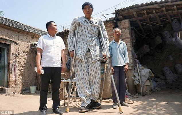 Giant: Xu Fuhai (pictured centre) is one of China's tallest men at 7ft 11in and he's still growing at 26-years-old