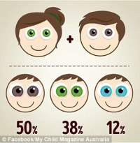 The eye colour combinations your baby could have based on ...