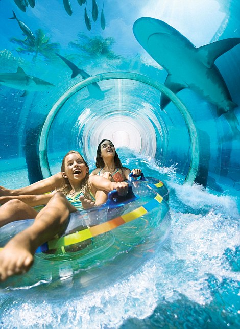 Shark Attack. one of the attractions at the Aquaventure water park
