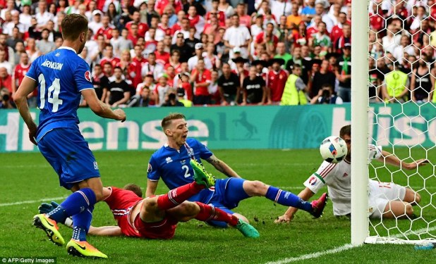 Birkir Saevarsson (centre) scored a late own-goal to hand Hungary a draw