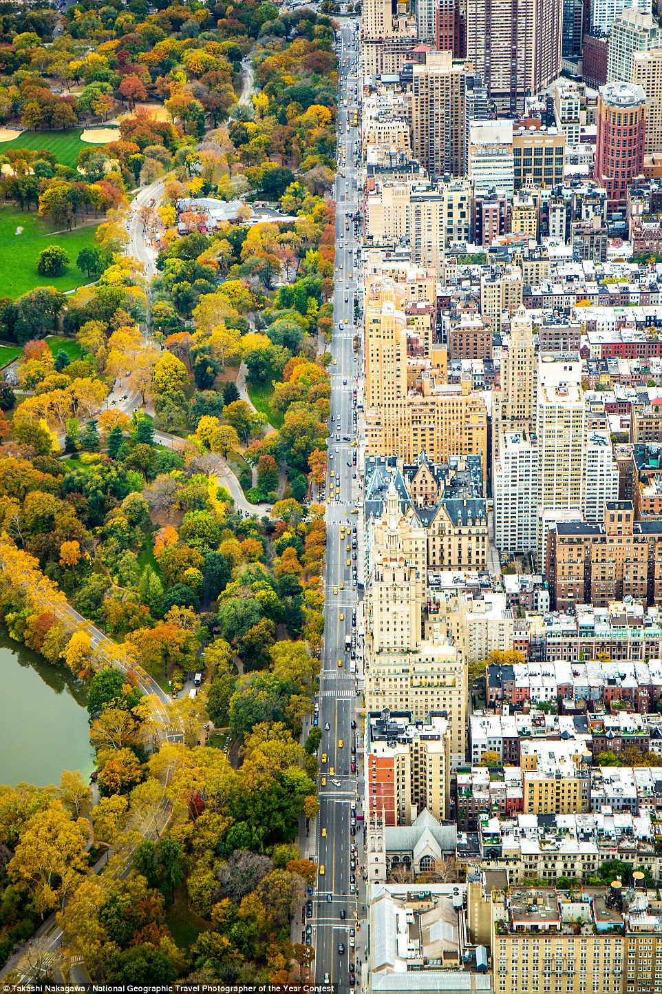 Divide by Kathleen Dolmatch, who said: 'In the helicopter looking south on Central Park West - dividing the architecture and Central park, on November 5th, 2014, a day before my 27th birthday. The flight was my birthday gift'