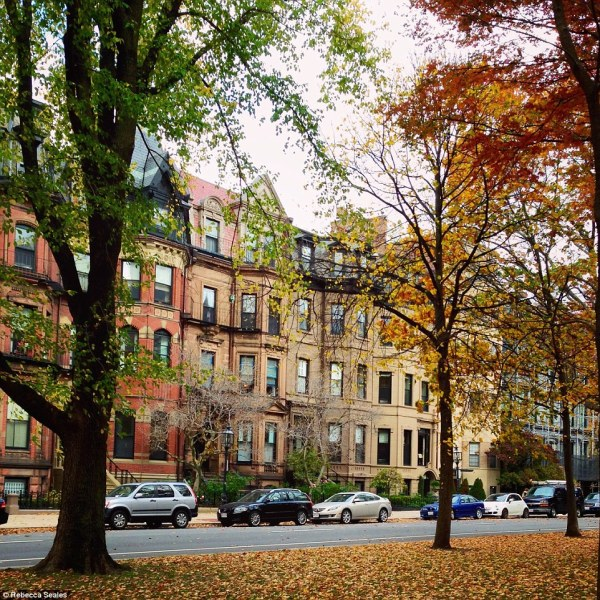 See the leaves turn in beautiful Boston For shoppers