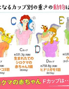 japanese lingerie firm has unveiled bizarre chart revealing which animals weigh the same as also unveils reveals rh dailymail