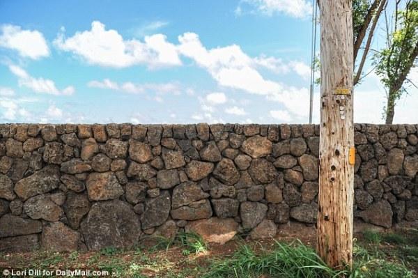 mark zuckerberg's hawaiian stone