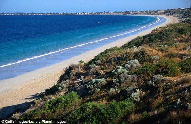 Kenyan Man Sexually Assaulted A Woman In A Nudist Beach In Australia  Diaspora -8786