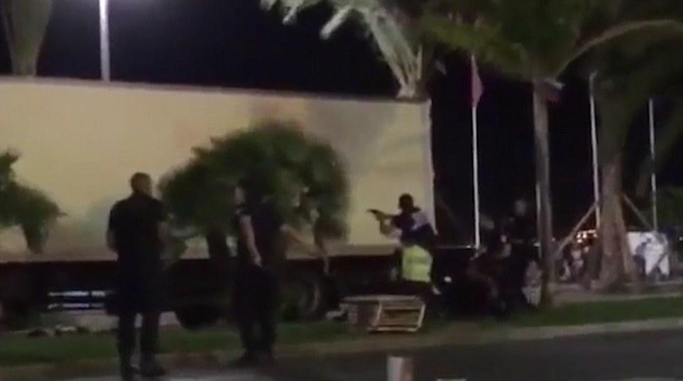 Última resistencia: Un testigo filmó agentes armados se acercan a la cabina del camión y disparando a través de su parabrisas y las puertas antes de que aparezca Bouhlet se puede oír gritando al ser alcanzado por una bala de la policía