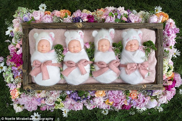 Quiet: Now aged two months, the babies slept through the whole of the photo shoot
