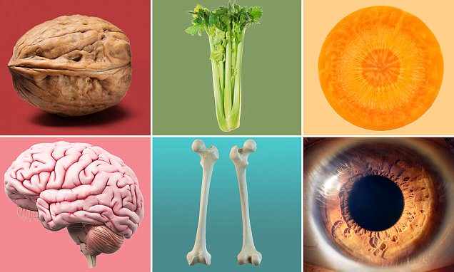 Healthista looks at the foods that are shaped like the ...