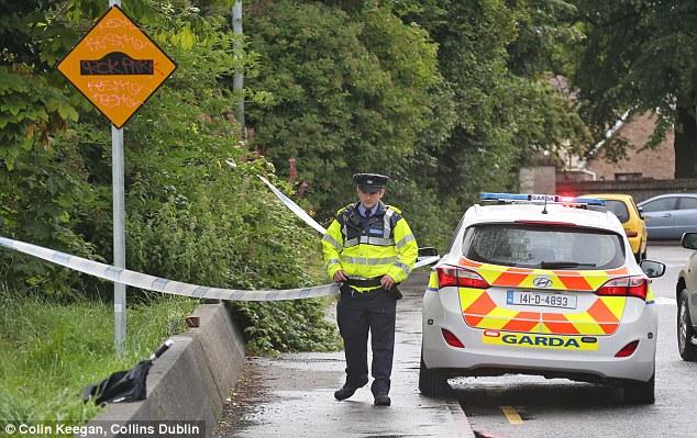 La mujer de 30 años había estado empujando su bicicleta por la carretera a seis millas fuera del centro de Dublín en 3 de la madrugada cuando fue abordado por tres hombres