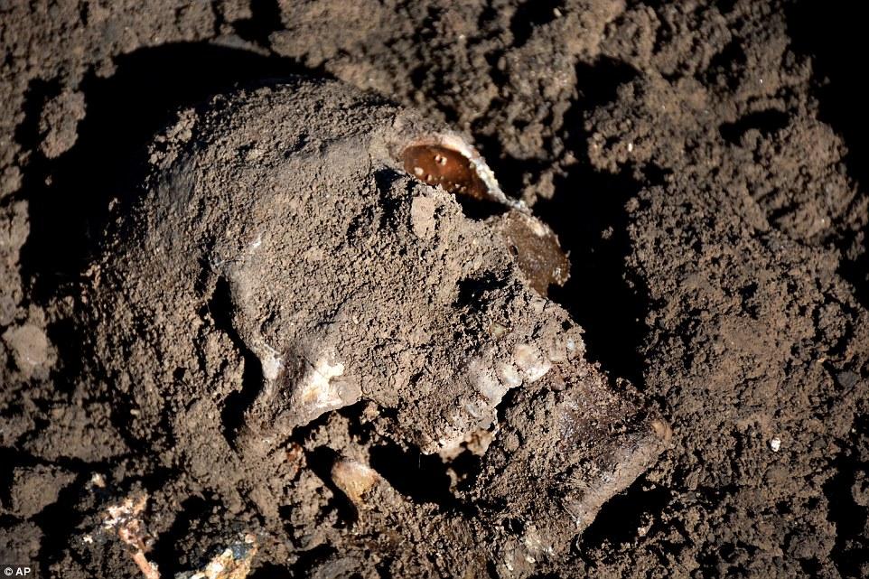 """Este cráneo humano fue encontrado en una fosa común con Yazidis muertos por ISIS en la región de Sinjar del norte de Irak en mayo de 2015. Las terribles historias han empezado a surgir dice cómo ISIS ordenó a la gente a """"convertir"""" o enfrentar la muerte"""