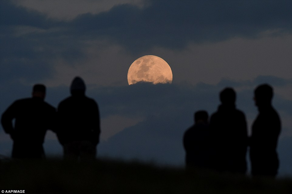 People watching the rare supermoon in south Sydney as the luminous sight enriches the sky