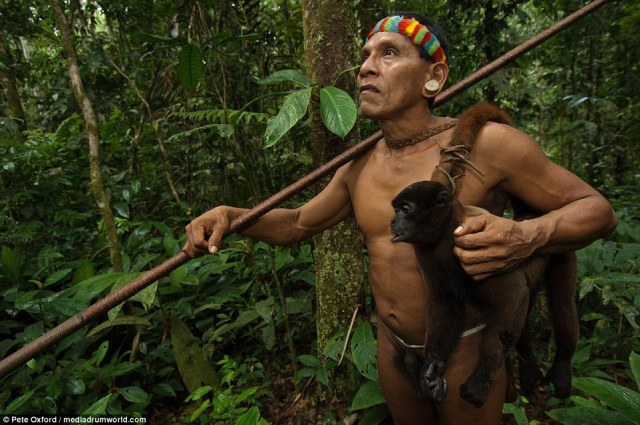 Ecuador is home to 300 species of monkey, none of which are endangered. The monkeys eat the forest's vegetation