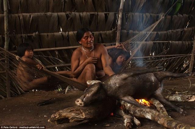 Los niños observan desde una hamaca como una mujer Huaorani cocina un pecarí. Pecaríes se encuentran en toda América Latina