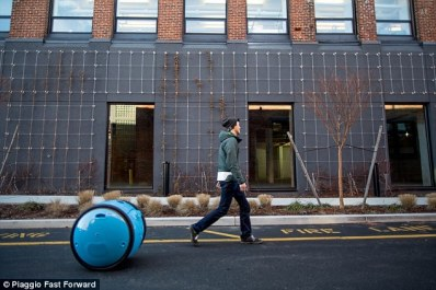 Cargo carrying robot