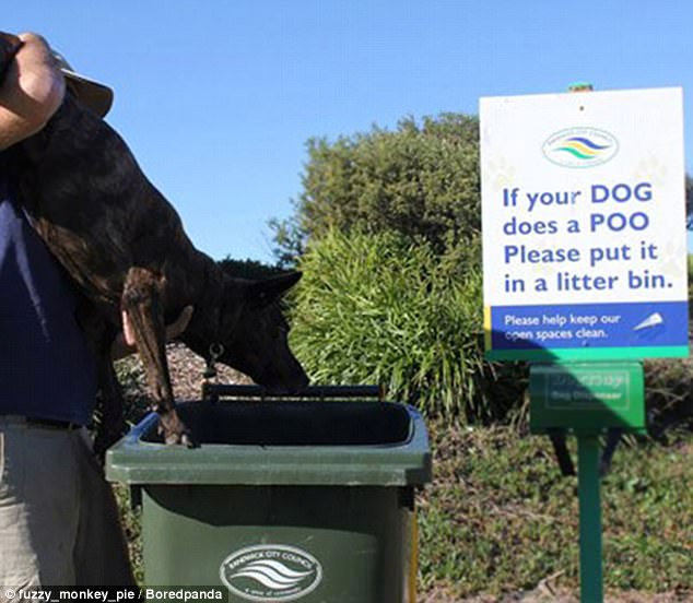 When this man's dog did his business, he decided there was only one thing for it...