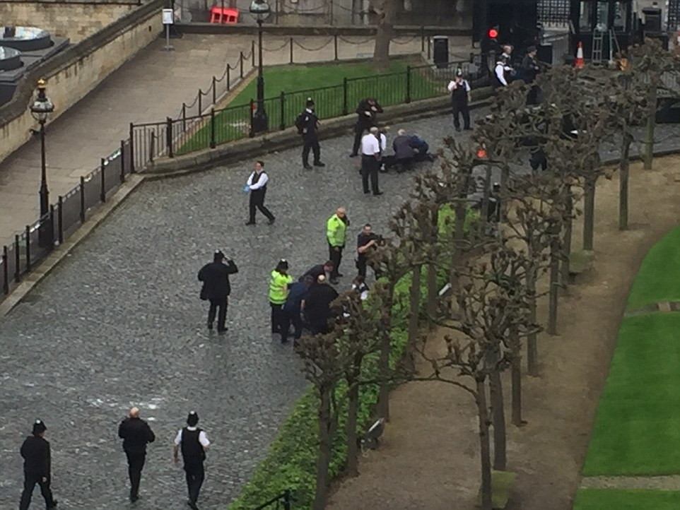 Emergency teams were seen carrying out CPR inside the palace grounds in New Palace Yard, the main thoroughfare in and out of Parliament