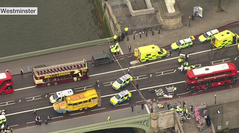 The attacker mowed down several pedestrians as he drove a grey Hyundai i40 across Westminster Bridge