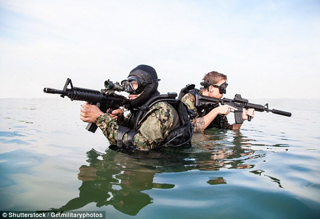 It is thought the devices, which place the brain in a 'hyper-learning' state, could improve shooting reaction times among SEAL units (stock image)