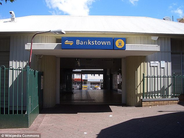 The alleged attack happened on an afternoon train travelling from Campsie to Bankstown