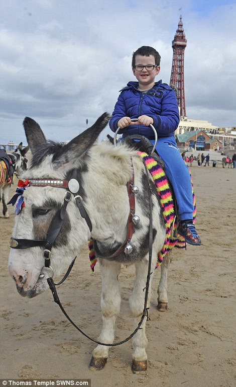 Charlie Godridge, 7, enjoys a ride on Jack the donkey on Blackpool beach, Lancashire