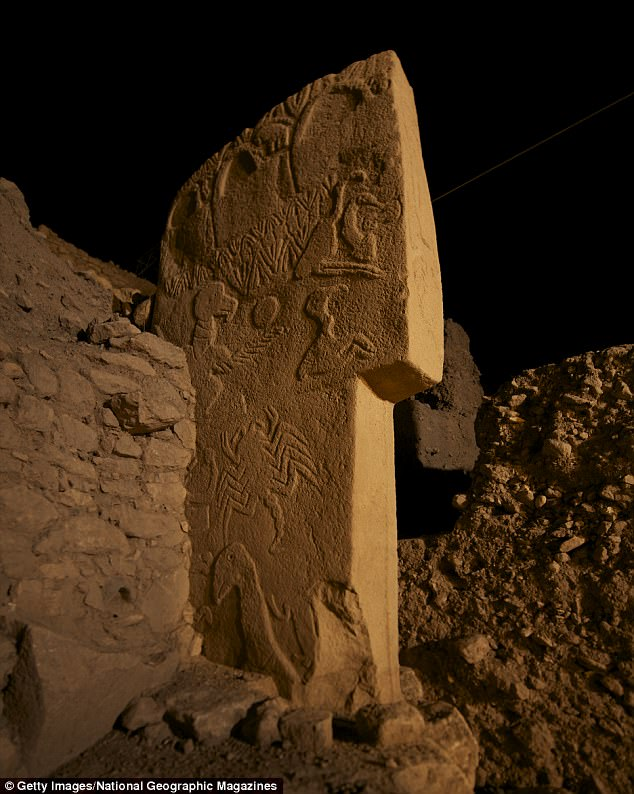 Ancient stone carvings confirm that a swarm of comets hit Earth 13,000 years ago sparking the rise of civilisations and wiping out the woolly mammoth. Pictured are the stone carvings used in the team's research, found onpillar 43 or 'the Vulture Stone' at Gobekli Tepe in Turkey