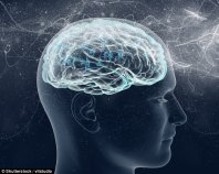 Damage to the prefrontal cortex brain means people are less able to critically evaluate their religious beliefs against those of other people (stock image)