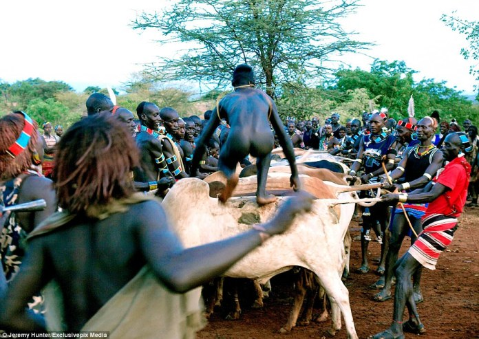 Men can make the transition to manhood if they can successfully complete a bull jump, carried out why naked. They are required to walk over 15 cattle in the ceremony, after which they are allowed to marry