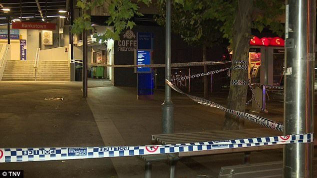 Two teenagers were stabbed multiple times by a Middle Eastern man at train station in Western Sydney