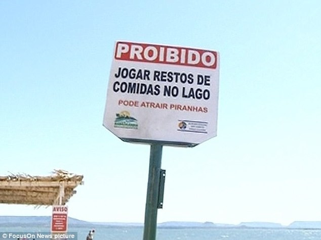 The local authority has denied that there is a problem with piranha attacks