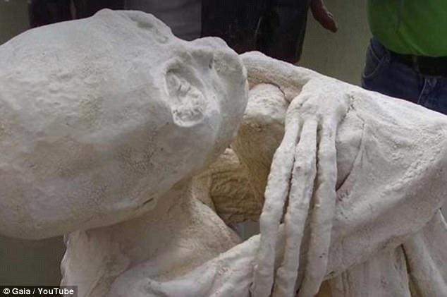Apesar da excitação em torno do novo achado, nem todos estão convencidos de que as múmias alienígenas são reais. Nigel Watson, especialista em OVNIs, afirma que as múmias costumam parecer coriáceas e que os achados peruanos parecem gesso