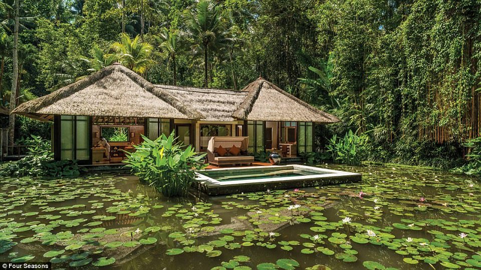 The Obamas are enjoying some rest and relaxation at the Four Seasons, where freestanding villas come with a private pool and a spacious sun terrace overlooking the lush rice fields surrounding the Ayung River. Pictured, the Four Seasons spa