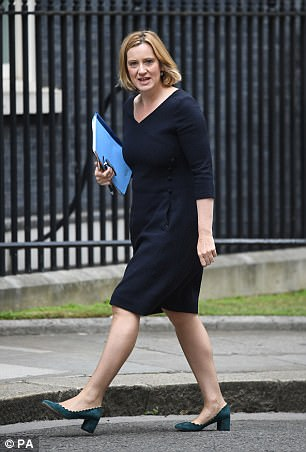 Home Secretary Amber Rudd issued a summary of a study warning that small donations from UK-based individuals is the 'main source' of funding for such organisations