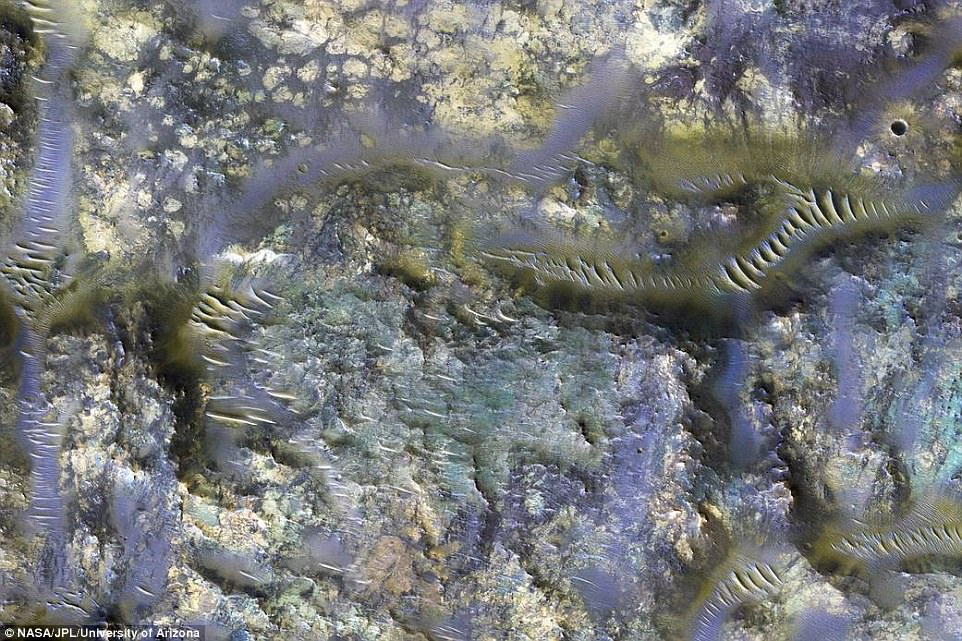 A stunning infrared image from NASA's Mars Reconnaissance Orbiter has revealed the worm-like fissures blanketing the floor of a mysterious crater on Mars. The image shows the spread of features known as 'ejecta,' or the material thrown across the surface after an impact