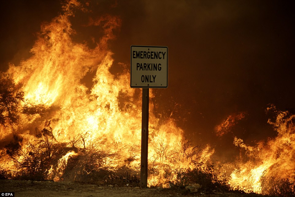 The fire raged alongside the 210 Freeway in Sunland, California leading authorities to close portions of the busy thoroughfare
