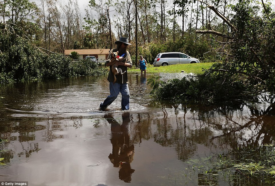 : A man walks through a flooded street in a rural part of Naples the morning after Hurricane Irma swept through the area on September 11, 2017 in Naples, Florida